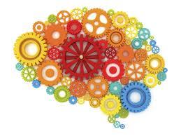 Neuroplasticidade – Cérebro Educado, Cérebro Mudado