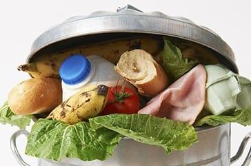 Refood – Reutilização De Bens Alimentares