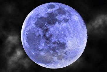 Cabeças Na Lua