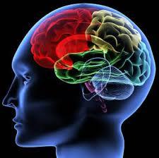 A Importância Da Psicologia Organizacional Nas Empresas